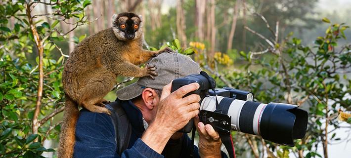 Ein Leben für die Tierfotografie